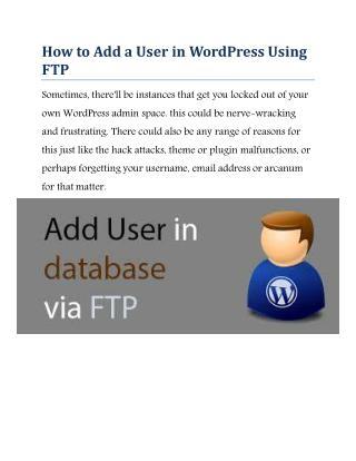 Wordpress customer support