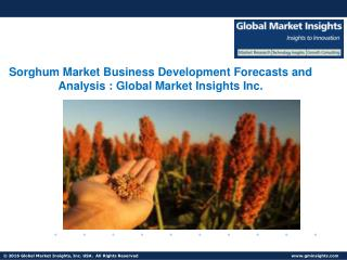 Sorghum Market Share, Research Reports & Industry Analysis, 2017 – 2024