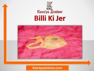 बिल्ली की जेर के प्रयोग और फायदे हिंदी में, बिल्ली की जेर की पूजा मंत्र सहित