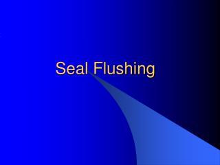 Seal Flushing