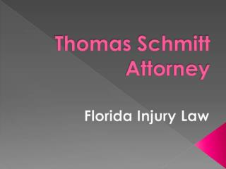 To Know More About Thomas Schmitt Attorney