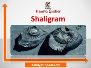 शालिग्राम शिला के प्रयोग और फायदे हिंदी में, शालिग्राम की पूजा मंत्र सहित