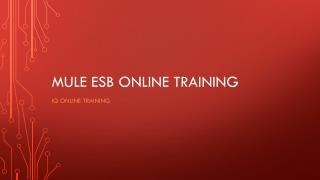 Mule ESB Online Training | IQ Online Training