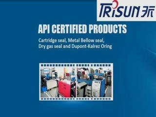 APV Pump Seal -  Trisun Mechanical Parts