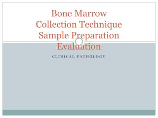 Bone Marrow Collection Technique Sample Preparation Evaluation
