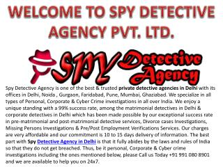Best Detective Agency in Delhi, India - Spy Detective Agency