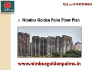 Retail Shops in Nimbus Golden Palms