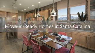 Move-in-Ready Homes in Santa Catalina