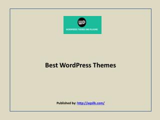 Major WordPress Themes