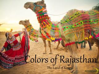 Colors of Rajasthan - The Land of Kings