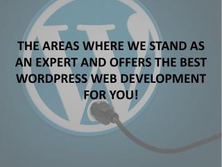 BEST WORDPRESS WEB DEVELOPMENT