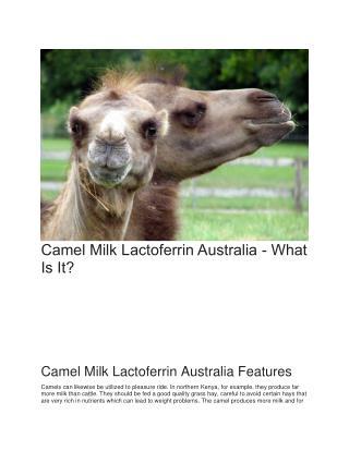 Camel Milk Lactoferrin Australia