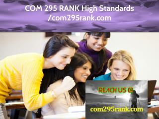 COM 295 RANK Expert Level - com295rank.com