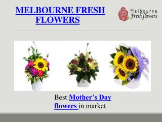 Best Mother's Day flowers Delivery – Melbourne Fresh flowers