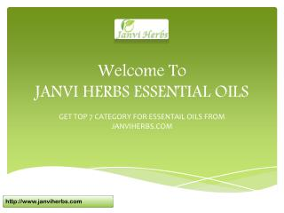 TOP 7 CATEGORY FOR ESSENTIAL OILS FROM JANVI HERBS