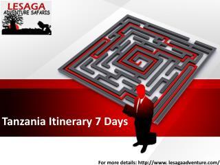 Tanzania Itinerary 7 Days