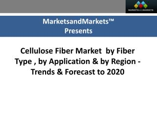 Impact of Cellulose Fiber Market Opportunities (2015–2020)