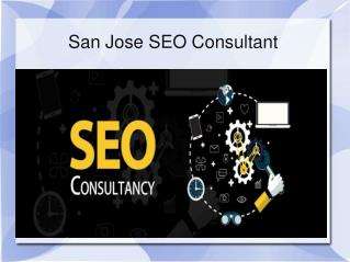 San Jose SEO Consultant