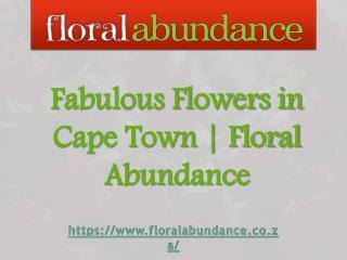 Fabulous Flowers in Cape Town | Floral Abundance