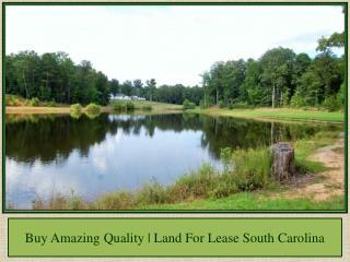 Buy Amazing Quality | Land For Lease South Carolina