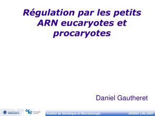 R gulation par les petits ARN eucaryotes et procaryotes
