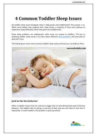 4 Common Toddler Sleep Issues : snoozeforkids.com