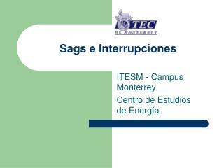 Sags e Interrupciones
