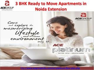 3 BHK Ready to Move Apartments in Noida Extension - Ace Group