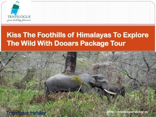 Kiss The Foothills of Himalayas To Explore The Wild With Dooars Package Tour