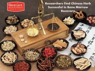 Successful in Bone Marrow Recovery with Chinese herb