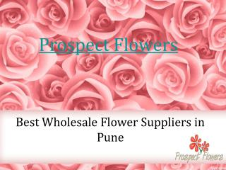 Best Wholesale Flower Suppliers in Pune - Prospect Flowers