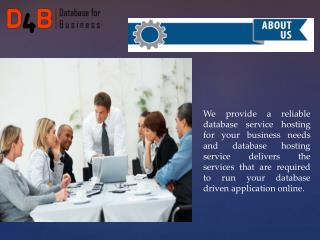 Dubai database companies
