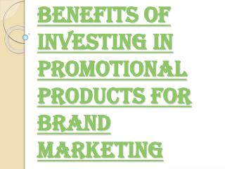 Promoting Your Brand with Various Promo Product Ideas