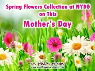 Amazing Fresh Flowers Collection at NYBG for Mother's Day