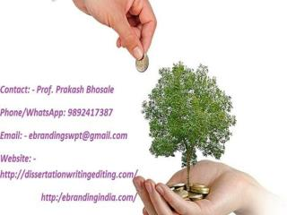 eBranding India is the Best Seed funding consultation services in Bhopal