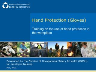Hand Protection Gloves