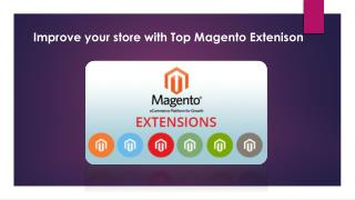 Improve Your Ecommerce Store Performance With Magento Extensions