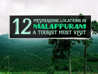 12-Mesmerising-Locations-in-Malappuram-a-Tourist-Must-Visit