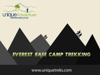 Trek in Nepal   Uniquetreks