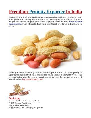 Premium Peanuts Exporter in India