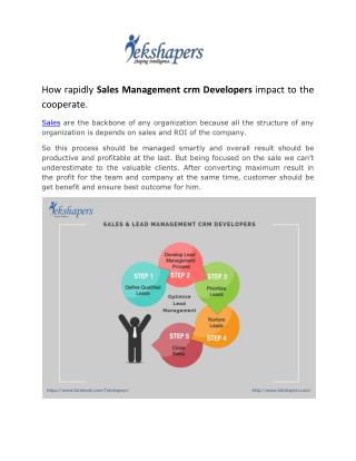 Lead management crm development firm.