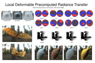 Local Deformable Precomputed Radiance Transfer