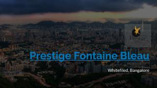 Prestige Fontaine bleau