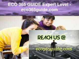 ECO 365 GUIDE Expert Level –eco365guide.com