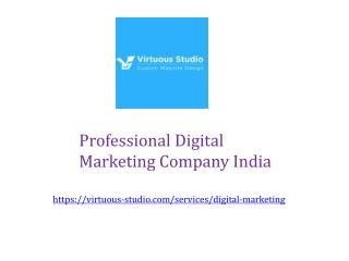 Professional Digital Marketing Company India