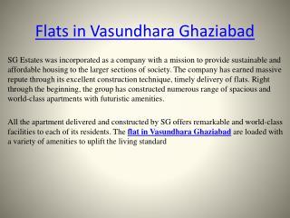 Flat in Vasundhara Ghaziabad