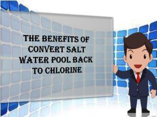 Benefits Of Convert Salt Water Pool Back To Chlorine