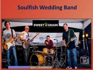Soulfish Wedding Band