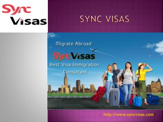 Sync Visas Reviews