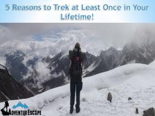5 Reasons to Trek at Least Once in Your Lifetime